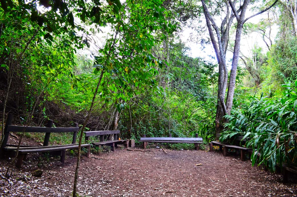 Oloolua Nature Trail_benches