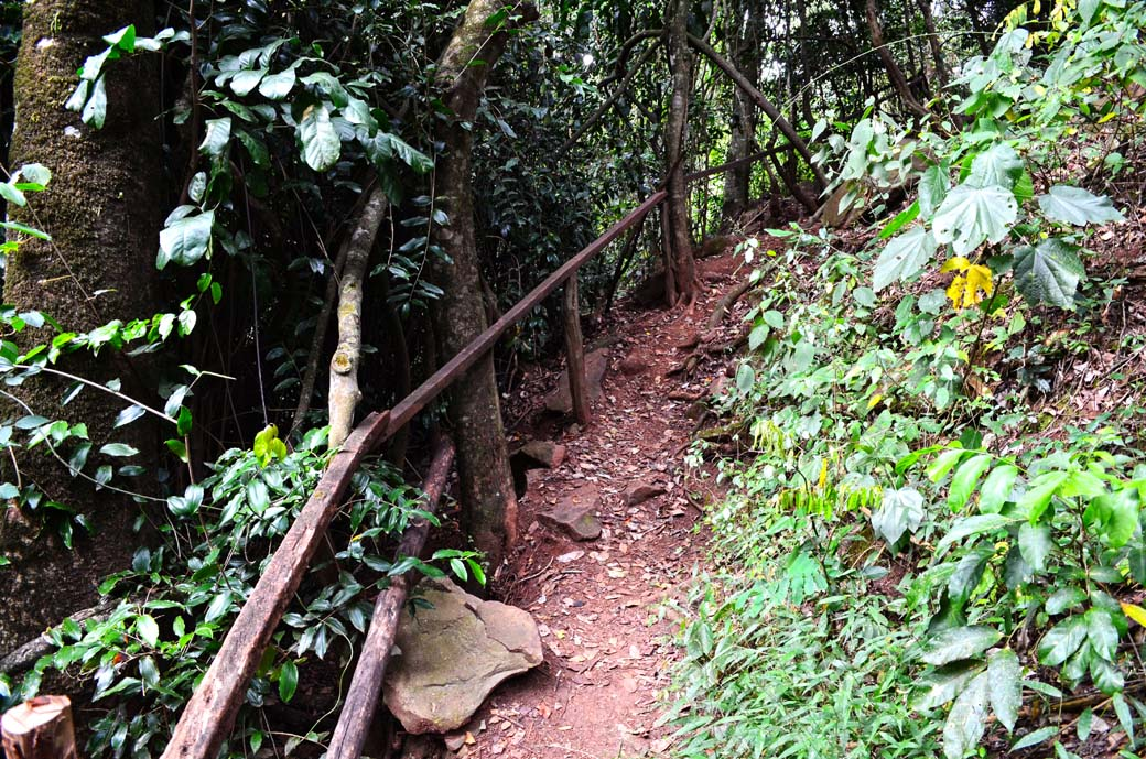 Oloolua Nature Trail_trail on slope