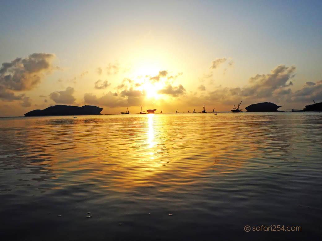 Watamu Beach_coral isolations