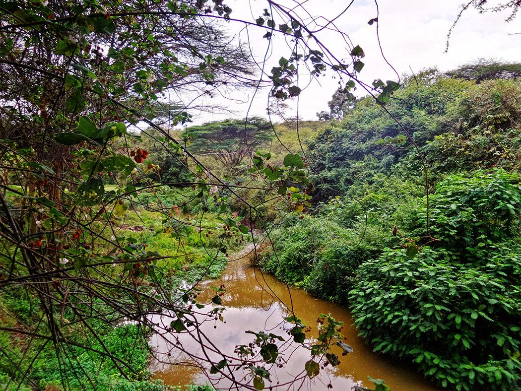 Masai Lodge_River1