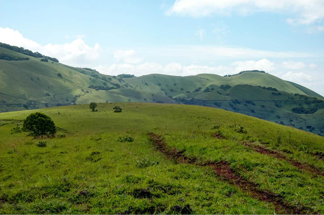 Chyulu Hills_KWS 11