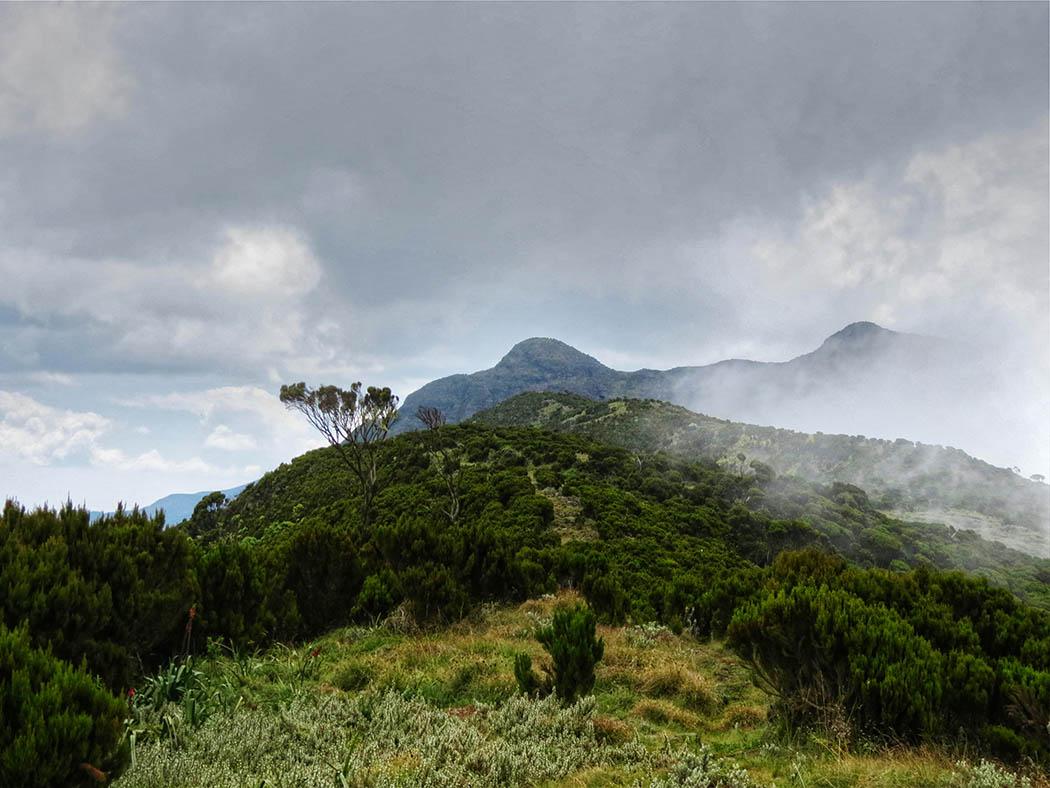 Elephant Hill Aberdares_ascent