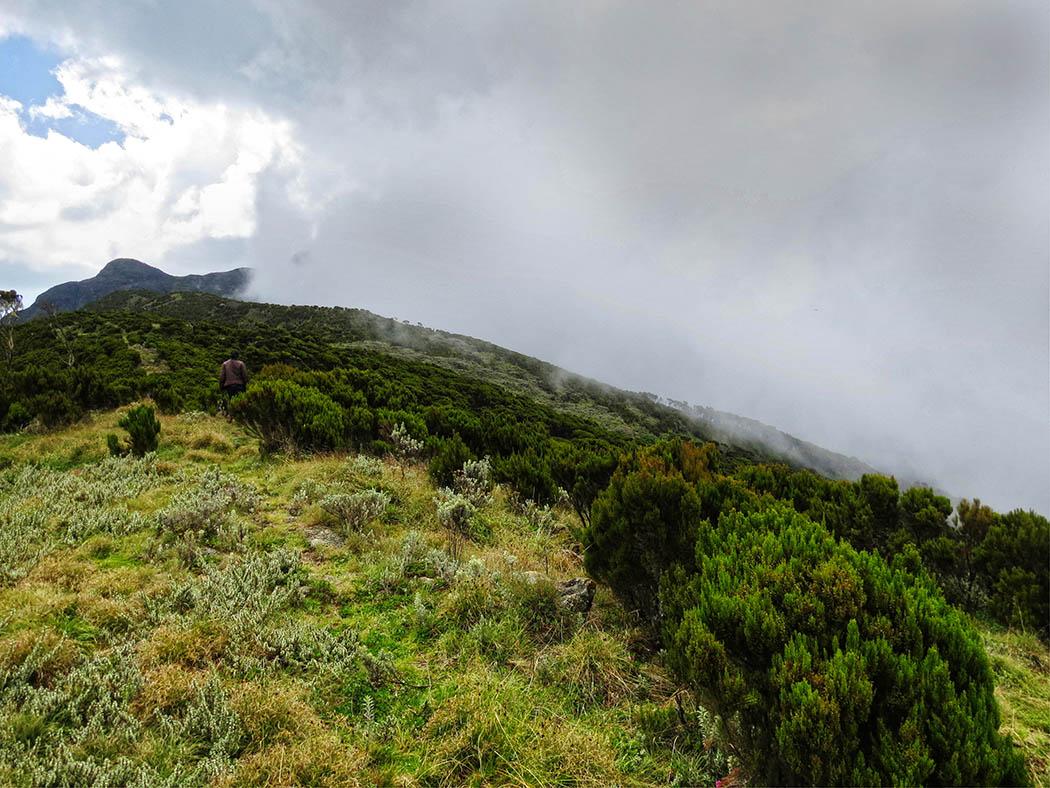 Elephant Hill Aberdares_top1