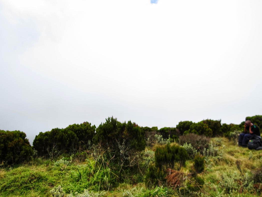 Elephant Hill Aberdares_top3