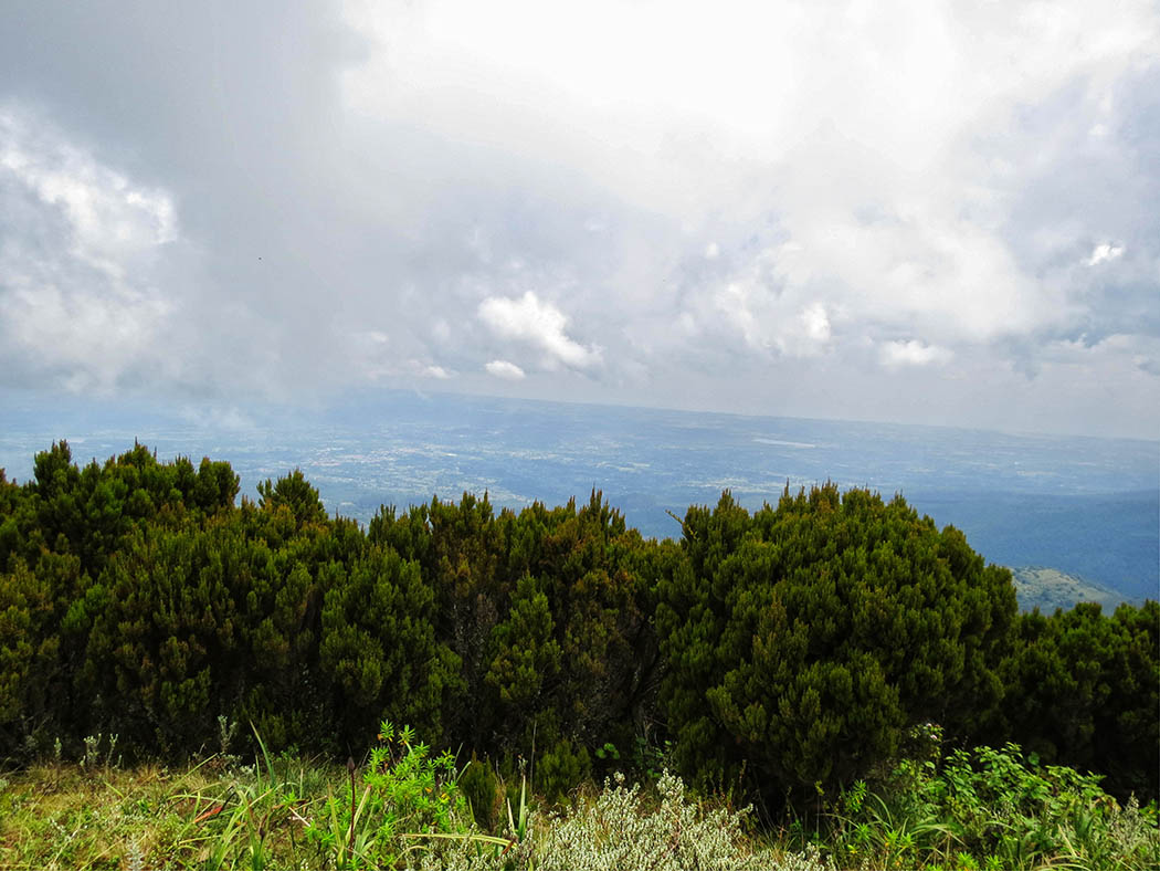 Elephant Hill Aberdares_top7