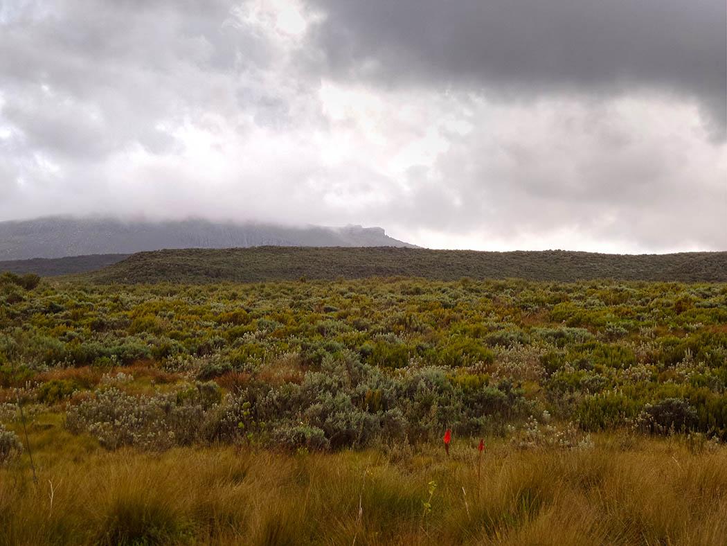 Mount Kenya_beginning hike Views 3