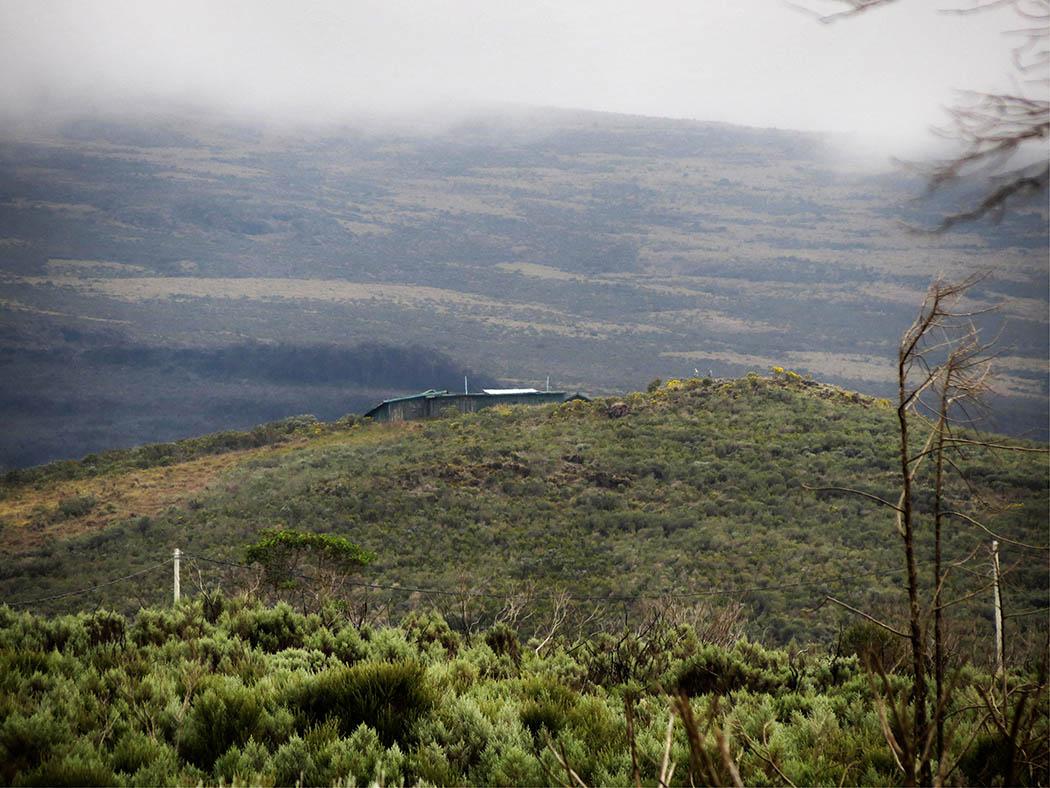 Mount Kenya_beginning hike Views