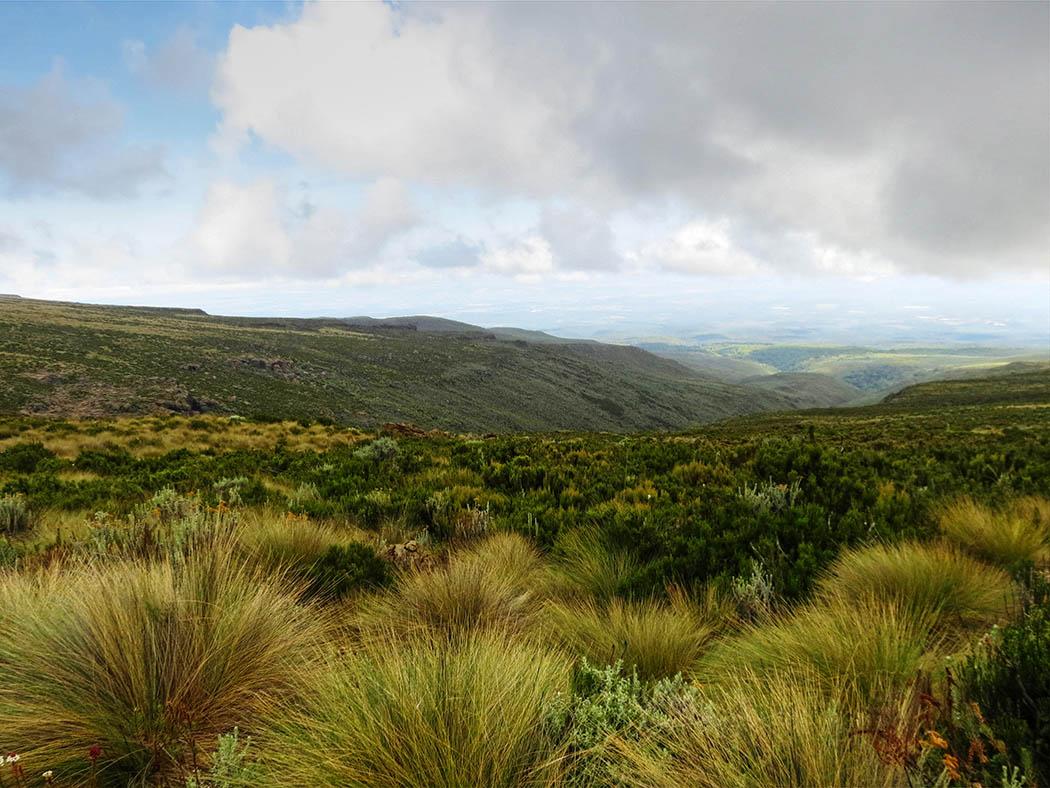 Mount Kenya_scenery 2