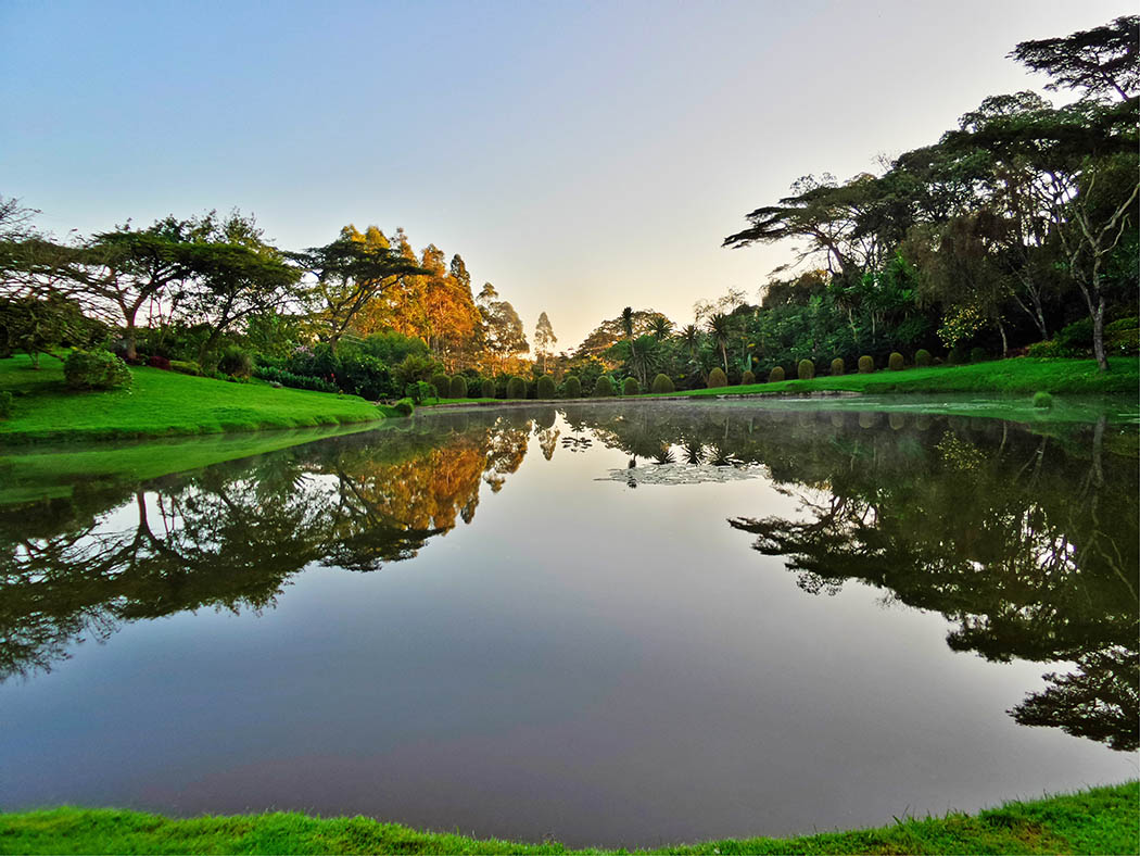 Unexpected Kenya_Kapsimotwa Gardens lake