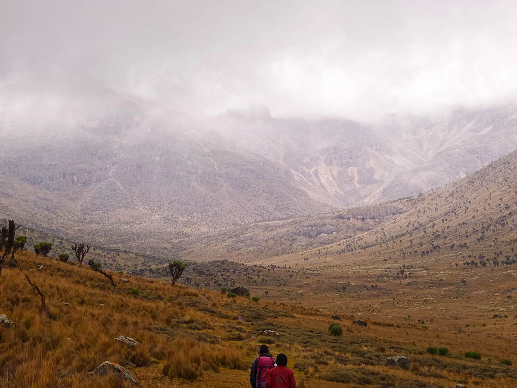 Mount Kenya_Mackinder's valley 11