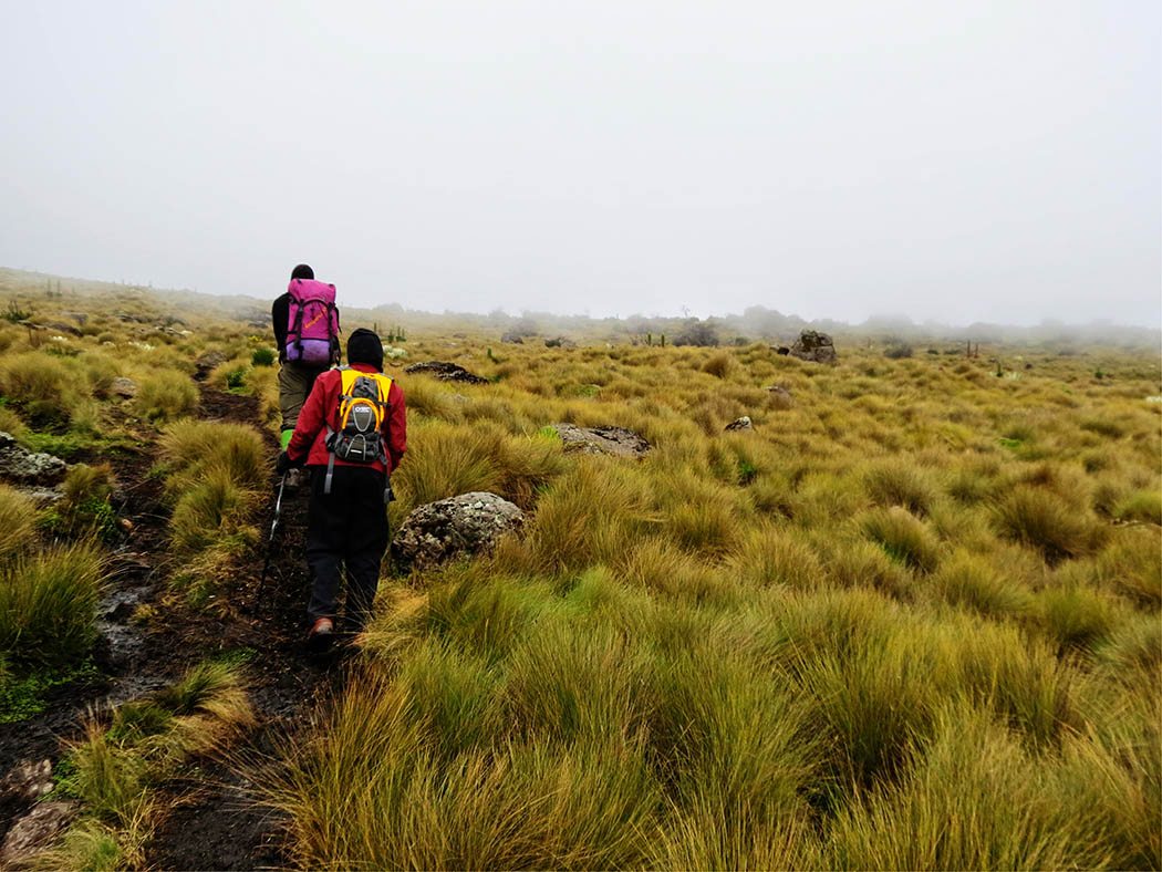 Mount Kenya_Mackinder's valley 5