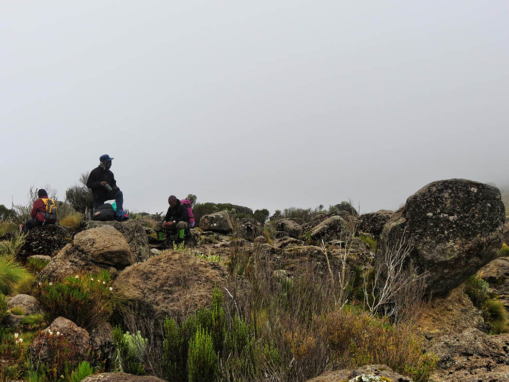 Mount Kenya_Mackinder's valley 8
