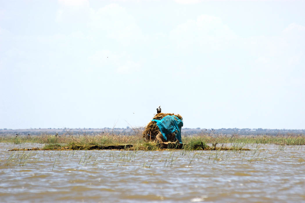 Unexpected Kenya_House in middle of lake