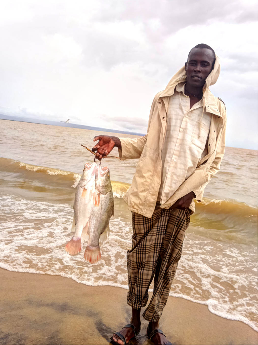 Unexpected Kenya_Nile perch