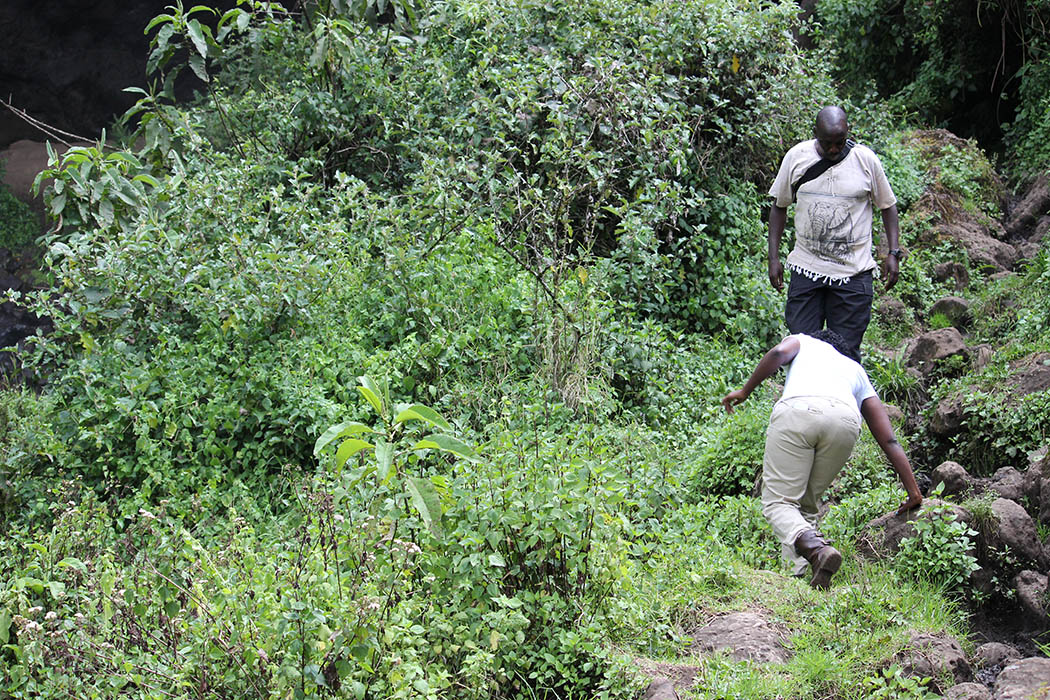Mt Elgon National Park_path to foot of falls