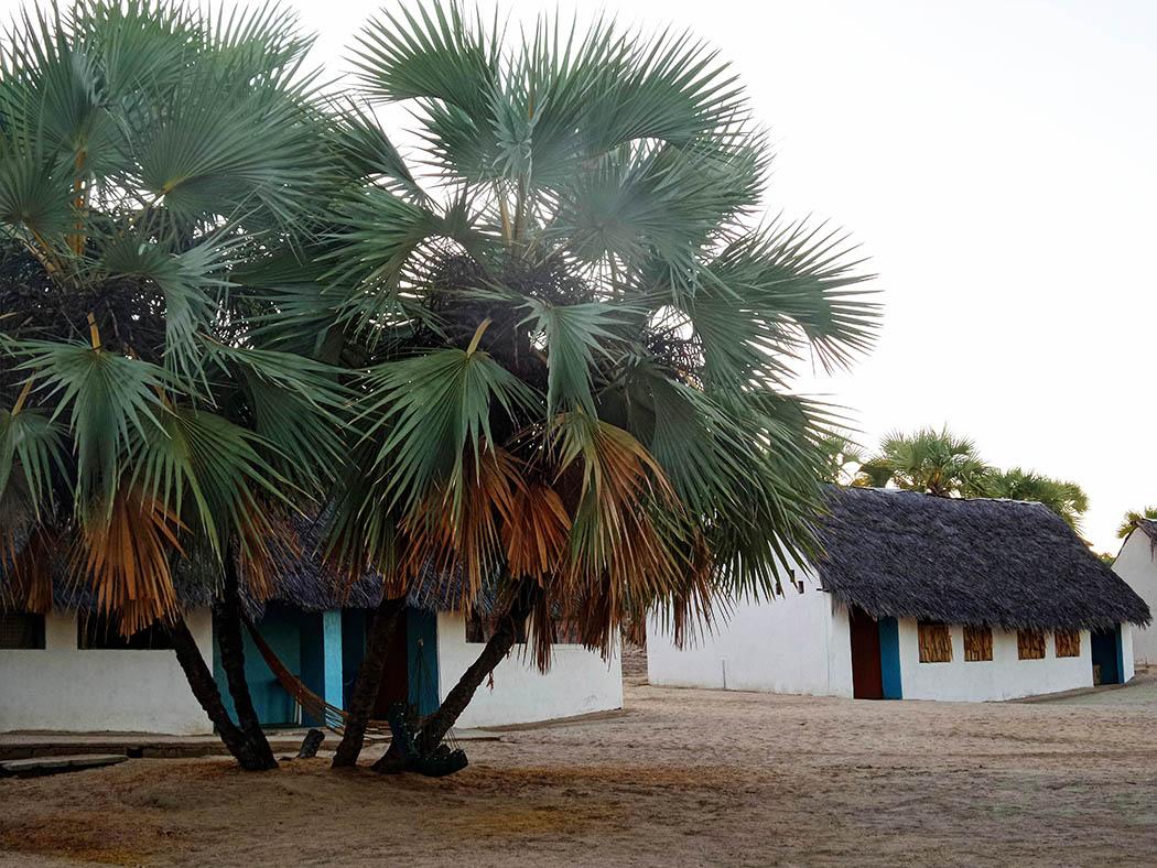 Eliye Springs Resort_Bomas1