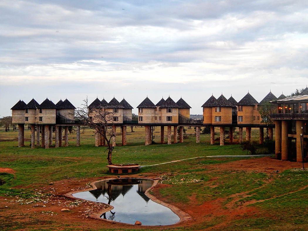 Taita Hills Wildlife Sanctuary_sarova salt lick lodge