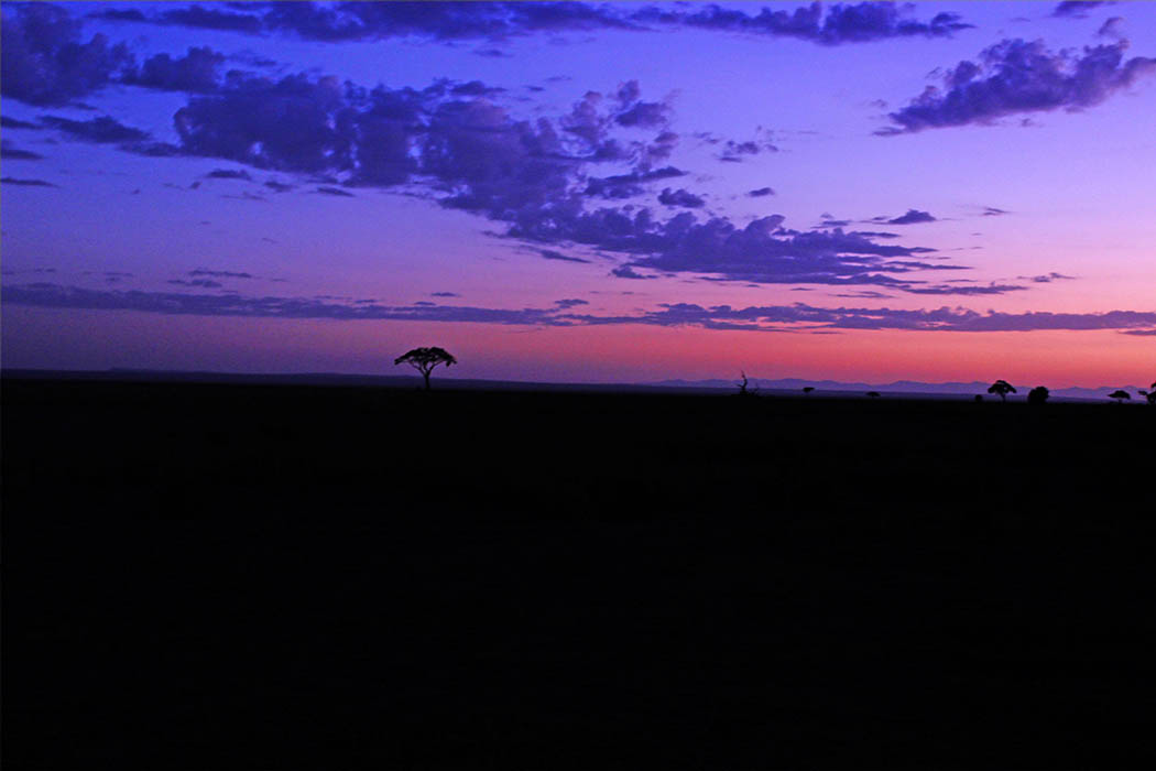 Amboseli National Park dawn