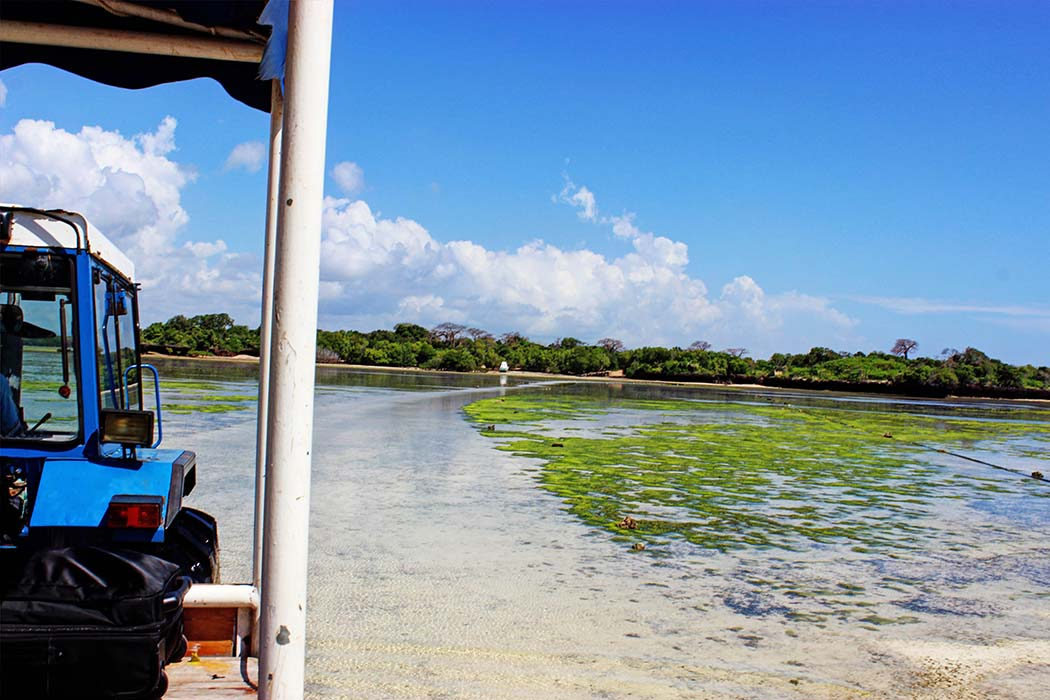 The Sands at Chale Island_to mainland