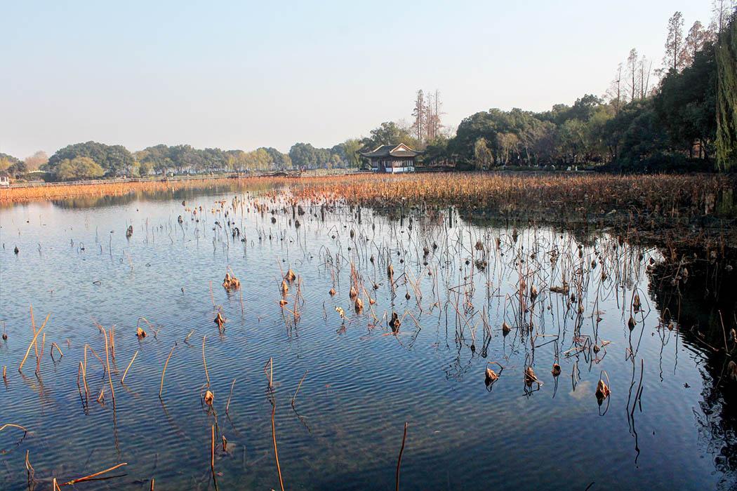 Hangzhou_Lotus Garden 2