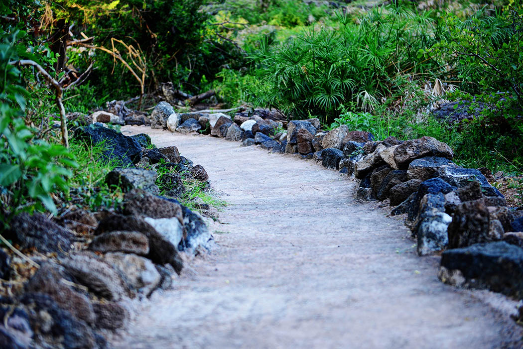 Tsavo West National Park_Path