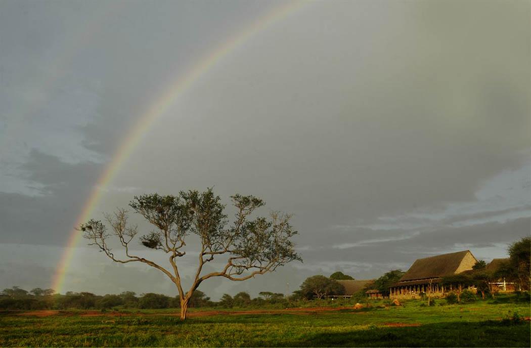 Kilaguni Serena safari Lodge_view