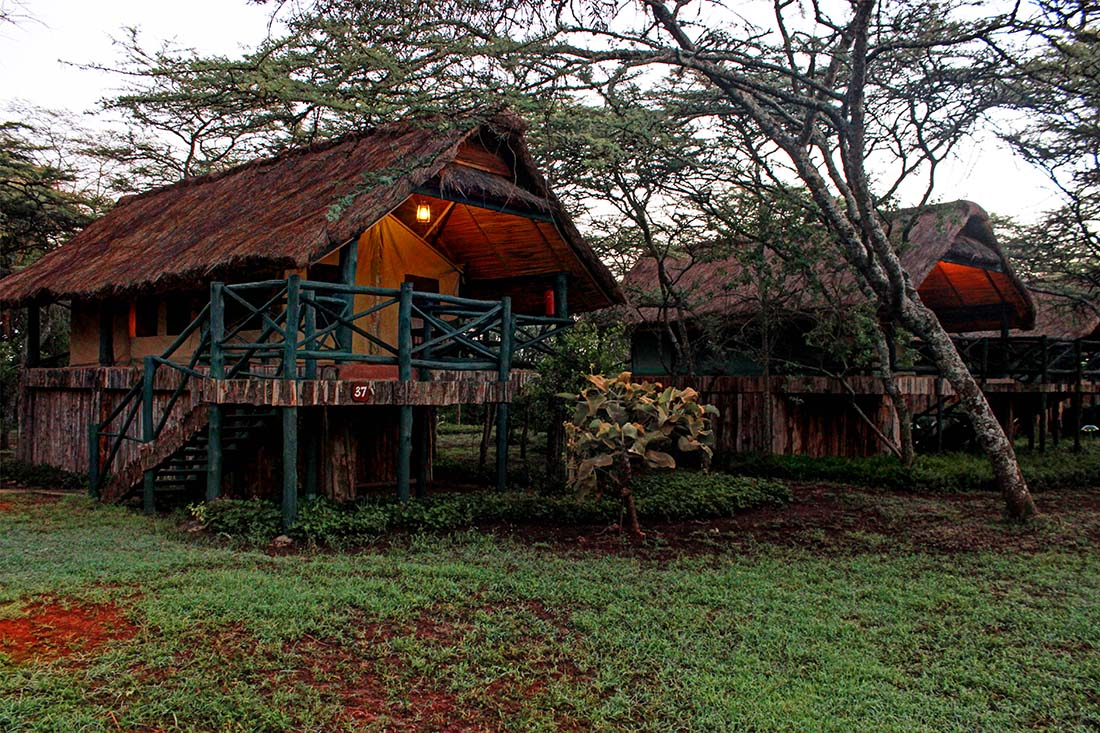 Sweetwaters Serena Camp_Tents