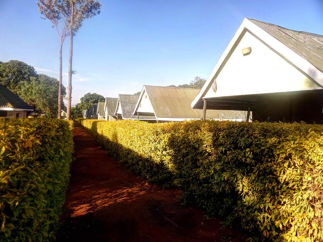 Rhino Camp_Rooms