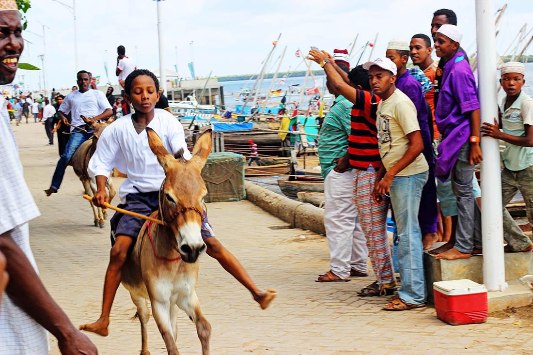Lamu Cultural Festival_donkey race 8