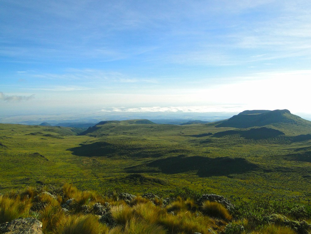 Aberdare National Park_rolling hills