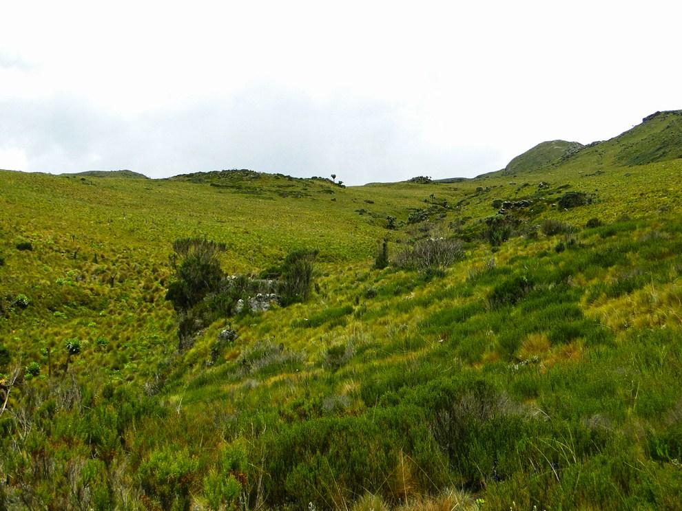 Aberdare National Park_valley