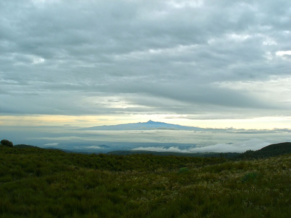 The Aberdare National Park includes the awe-inspiring horizon view of the majestic Mount Kenya 40 kms to the west