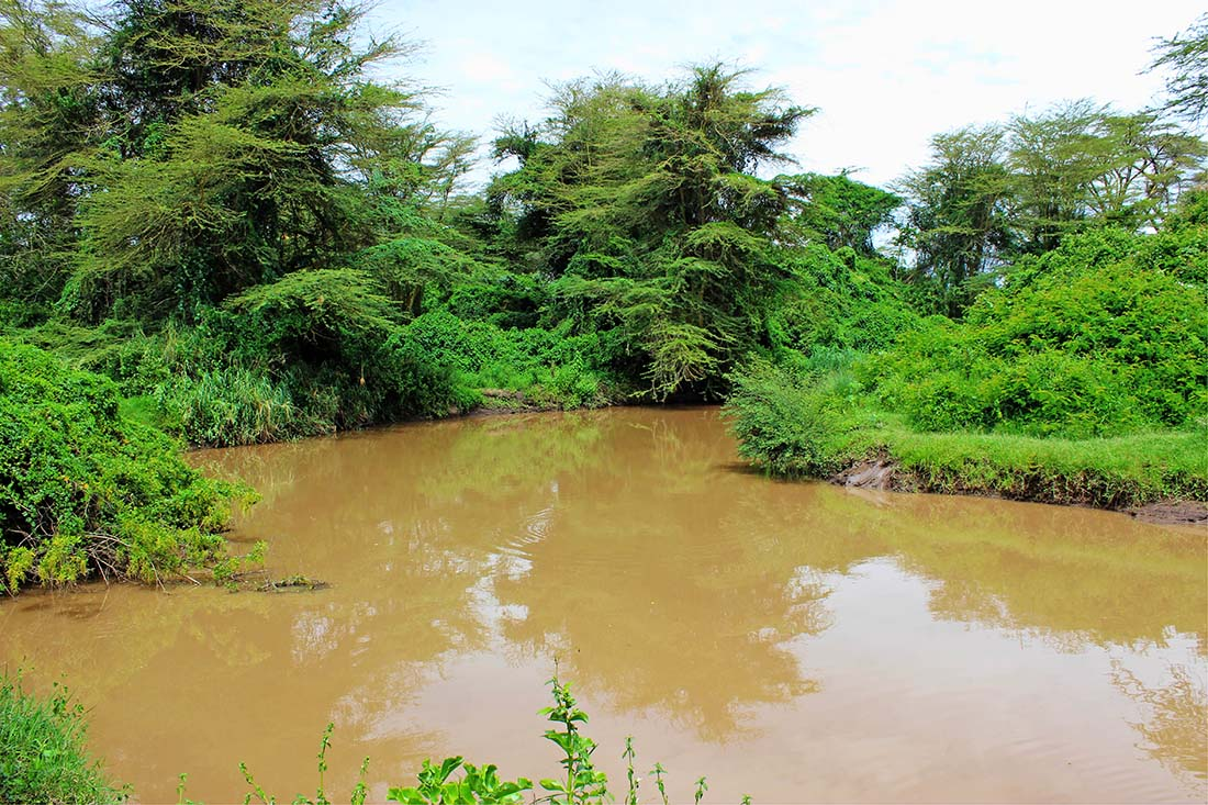 Sweetwaters Chimpanzee Sanctuary_Ewaso Nyiro river