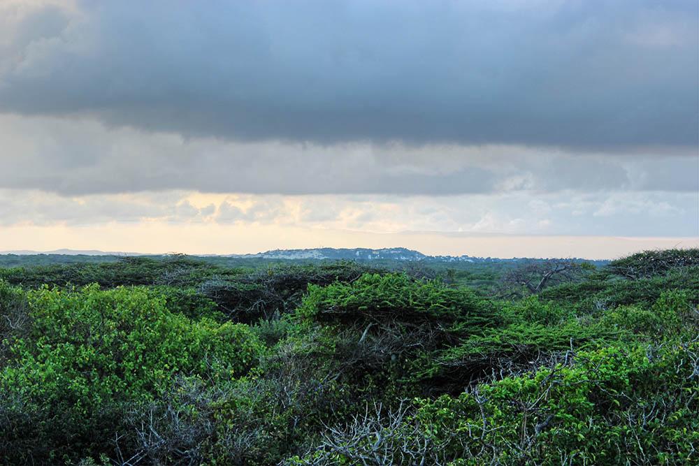 Takwa Ruins_overcast