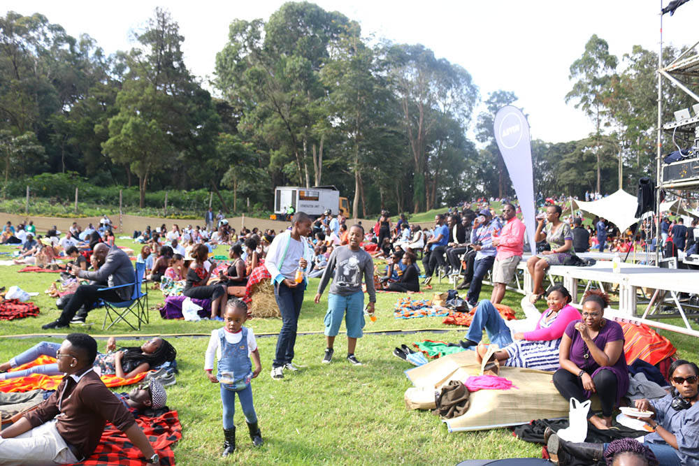 Blankets and Wine July 2016_Crowd1