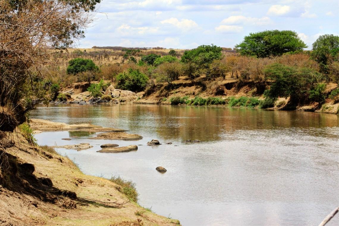 Maasai Mara_Mara River1