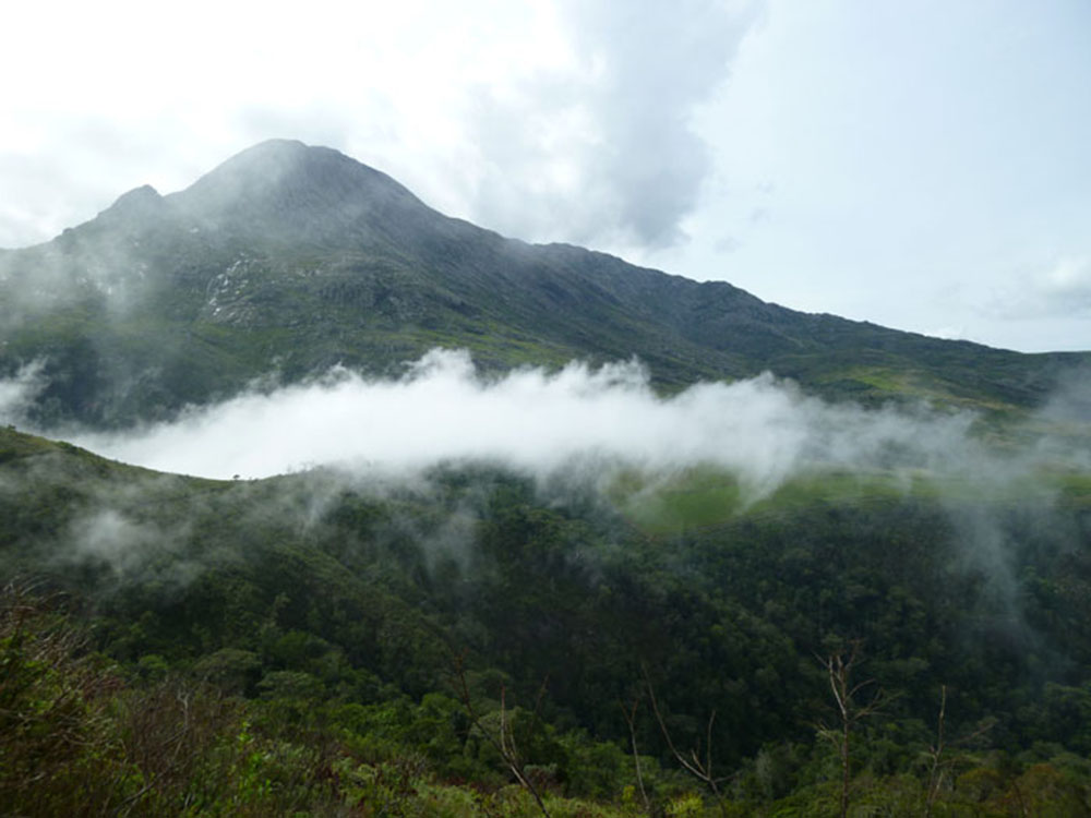 Mount Mulanje_mist 2