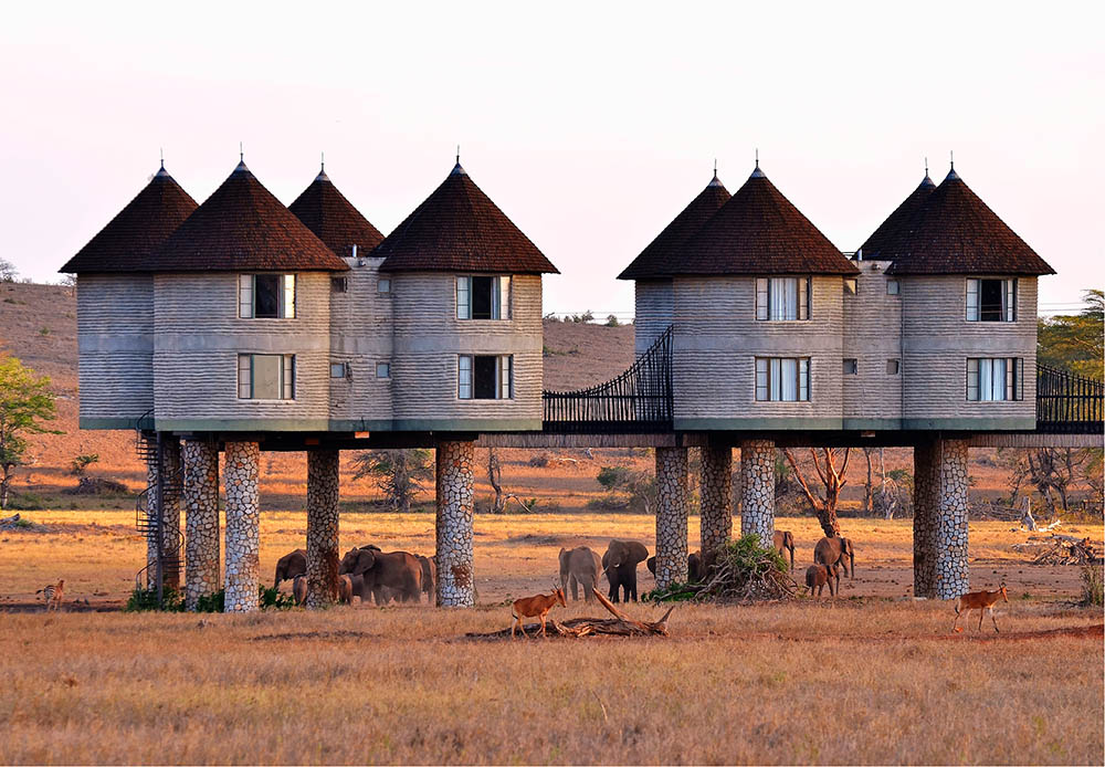 sarova-salt-lick-game-lodge