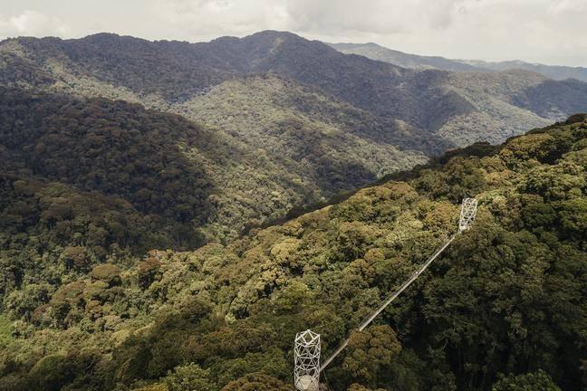 safari-in-rwanda-canopy-walkway_02