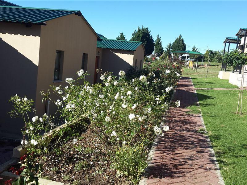 Aloes Lancers Gap Lesotho Accommodation