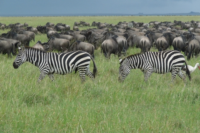 Northern Circuit Tanzania