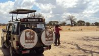 4 days ndutu budget camping safari