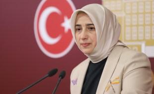 Grup Başkanvekili Özlem Zengin'in bugün Mecliste Tokat'a dair teşekkür ve açıklamaları