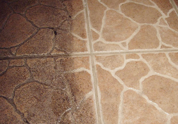 www safecleancarpetcleaning com
