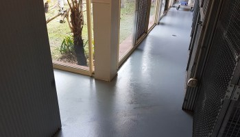 cat kennels commercial flooring