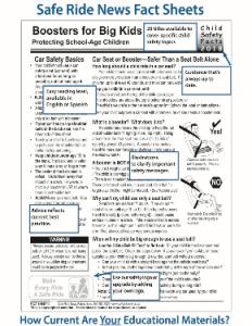 Fact Sheet Description 375X290