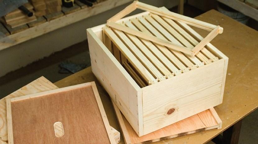 membuat kandang lebah madu stup
