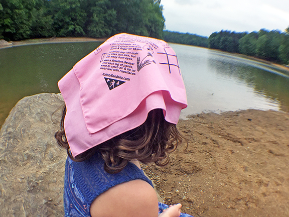 Pink bandana back