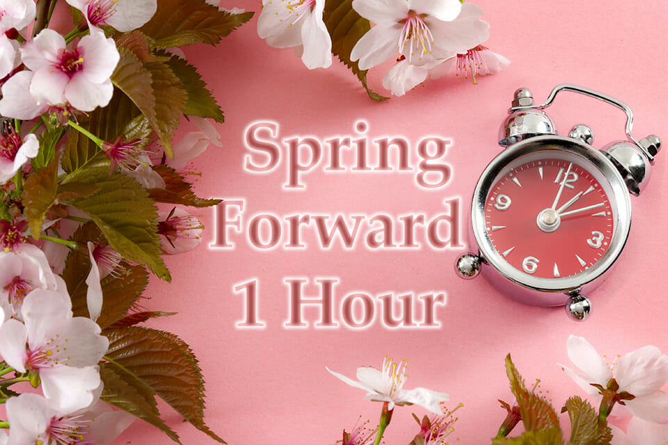 Daylight Savings - Spring Forward 1 Hour