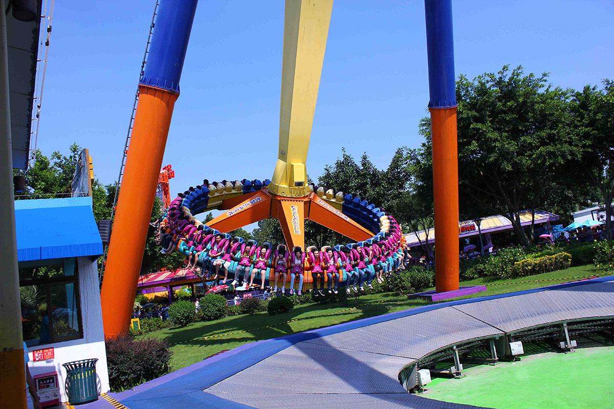 Amusement Park Hazards